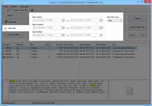Date Filters Tab